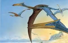 Afbeelding van Quetzalcoatlus
