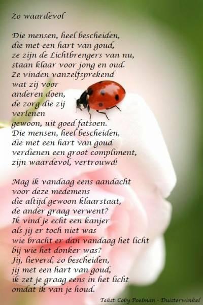 1001 Gedichten Gedichtjes Gedicht Zo Waardevol Door